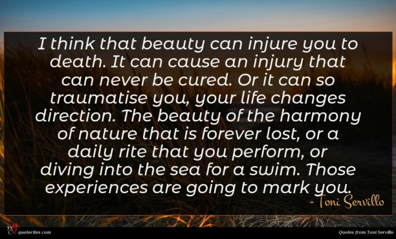 I think that beauty can injure you to death. It can cause an injury that can never be cured. Or it can so traumatise you, your life changes direction. The beauty of the harmony of nature that is forever lost, or a daily rite that you perform, or diving into the sea for a swim. Those experiences are going to mark you.