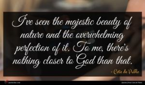 Cote de Pablo quote : I've seen the majestic ...