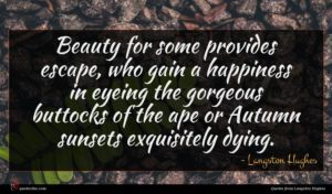 Langston Hughes quote : Beauty for some provides ...