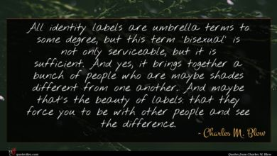 Photo of Charles M. Blow quote : All identity labels are …