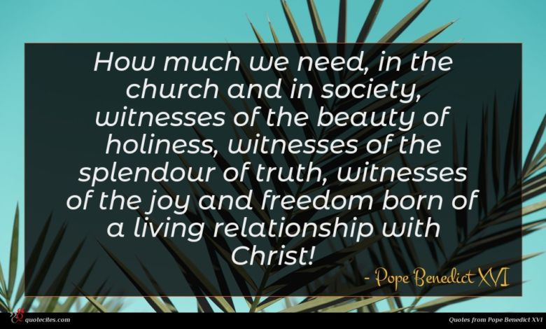 How much we need, in the church and in society, witnesses of the beauty of holiness, witnesses of the splendour of truth, witnesses of the joy and freedom born of a living relationship with Christ!