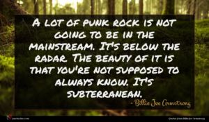 Billie Joe Armstrong quote : A lot of punk ...