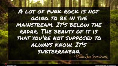Photo of Billie Joe Armstrong quote : A lot of punk …