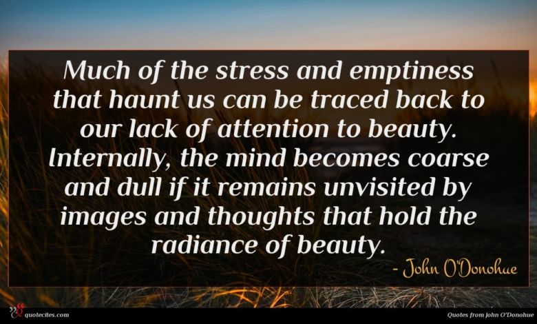 Photo of John O'Donohue quote : Much of the stress …