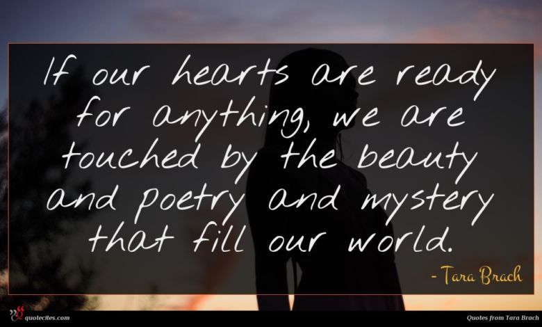 Photo of Tara Brach quote : If our hearts are …