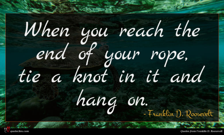 Photo of Franklin D. Roosevelt quote : When you reach the …
