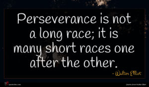 Walter Elliot quote : Perseverance is not a ...