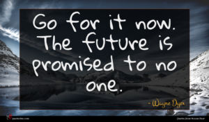 Wayne Dyer quote : Go for it now ...