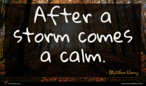 Matthew Henry quote : After a storm comes ...