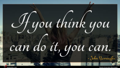Photo of John Burroughs quote : If you think you …