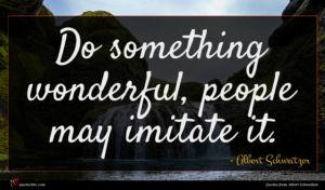 Albert Schweitzer quote : Do something wonderful people ...