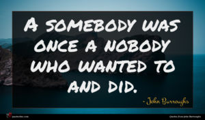 John Burroughs quote : A somebody was once ...