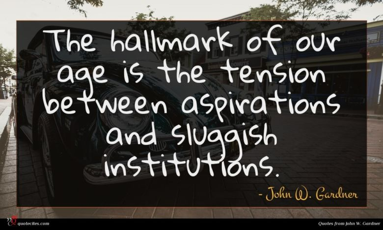 The hallmark of our age is the tension between aspirations and sluggish institutions.