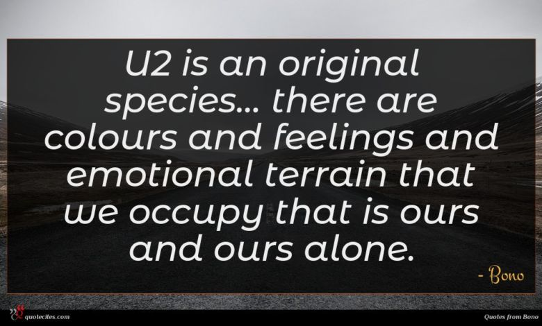 U2 is an original species... there are colours and feelings and emotional terrain that we occupy that is ours and ours alone.