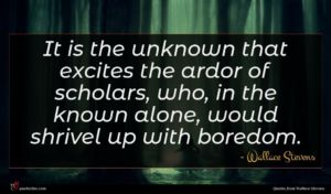 Wallace Stevens quote : It is the unknown ...