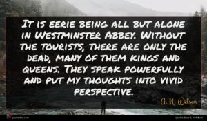 A. N. Wilson quote : It is eerie being ...