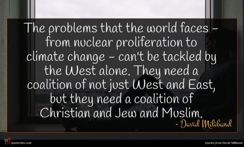 Photo of David Miliband quote : The problems that the …