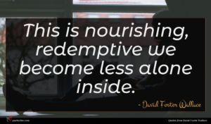 David Foster Wallace quote : This is nourishing redemptive ...