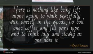 Knut Hamsun quote : There is nothing like ...