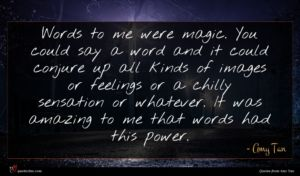 Amy Tan quote : Words to me were ...
