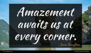 James Broughton quote : Amazement awaits us at ...
