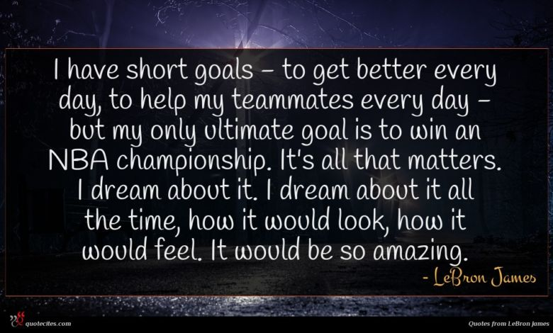 I have short goals - to get better every day, to help my teammates every day - but my only ultimate goal is to win an NBA championship. It's all that matters. I dream about it. I dream about it all the time, how it would look, how it would feel. It would be so amazing.