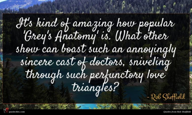 It's kind of amazing how popular 'Grey's Anatomy' is. What other show can boast such an annoyingly sincere cast of doctors, sniveling through such perfunctory love triangles?