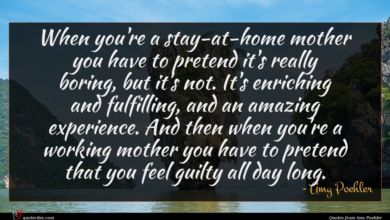 Photo of Amy Poehler quote : When you're a stay-at-home …