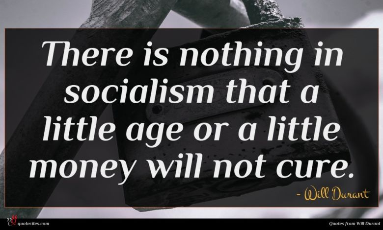 There is nothing in socialism that a little age or a little money will not cure.