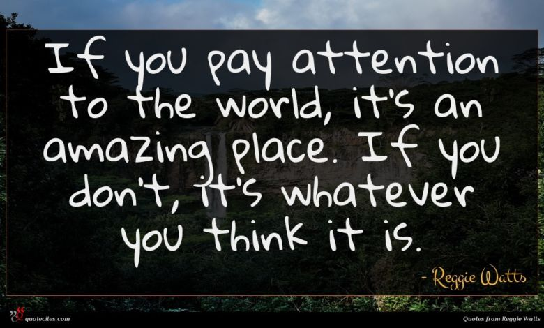 If you pay attention to the world, it's an amazing place. If you don't, it's whatever you think it is.