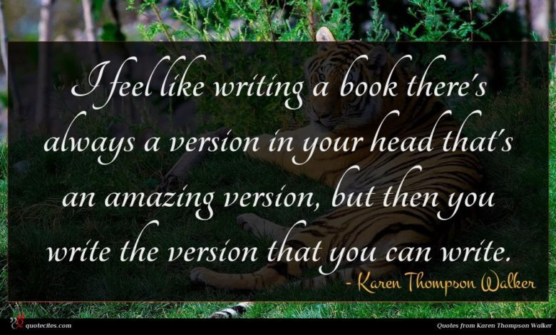 I feel like writing a book there's always a version in your head that's an amazing version, but then you write the version that you can write.