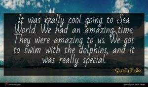 Sarah Chalke quote : It was really cool ...