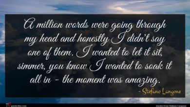 Photo of Stefano Langone quote : A million words were …