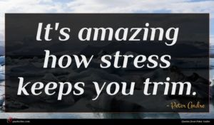 Peter Andre quote : It's amazing how stress ...