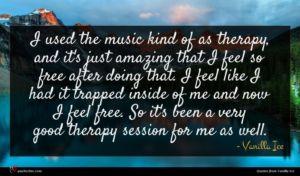 Vanilla Ice quote : I used the music ...