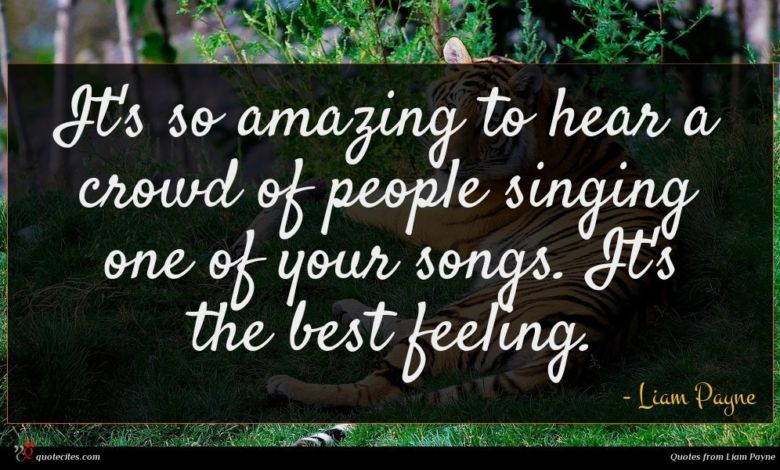 It's so amazing to hear a crowd of people singing one of your songs. It's the best feeling.