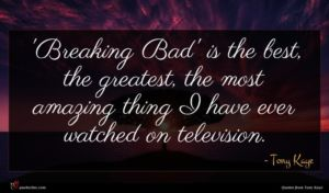 Tony Kaye quote : Breaking Bad' is the ...