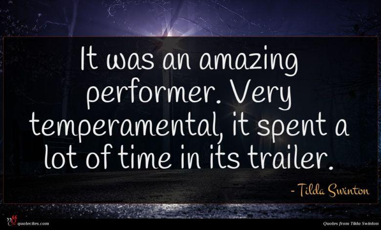 Photo of Tilda Swinton quote : It was an amazing …