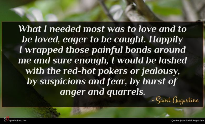 Photo of Saint Augustine quote : What I needed most …