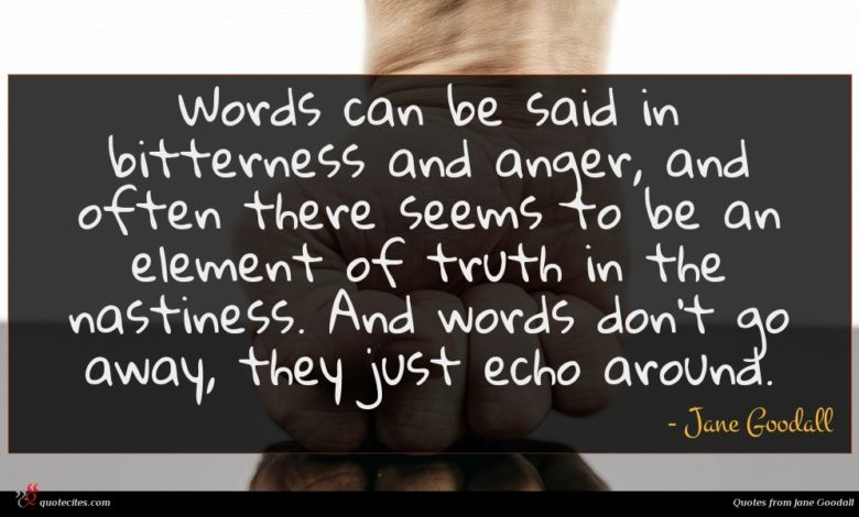 Words can be said in bitterness and anger, and often there seems to be an element of truth in the nastiness. And words don't go away, they just echo around.