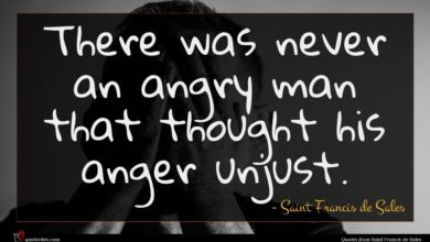 Photo of Saint Francis de Sales quote : There was never an …