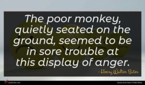 Henry Walter Bates quote : The poor monkey quietly ...