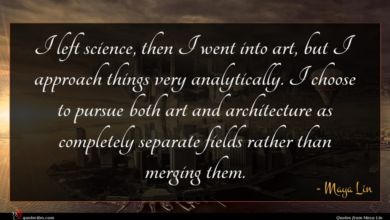Photo of Maya Lin quote : I left science then …