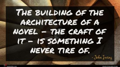 Photo of John Irving quote : The building of the …