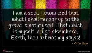 Victor Hugo quote : I am a soul ...
