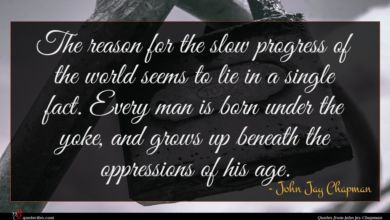 Photo of John Jay Chapman quote : The reason for the …
