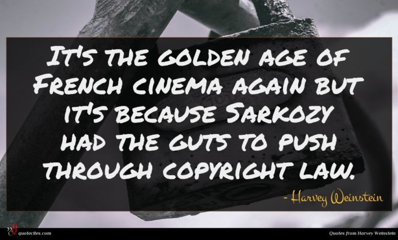 It's the golden age of French cinema again but it's because Sarkozy had the guts to push through copyright law.