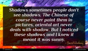 David Hockney quote : Shadows sometimes people don't ...