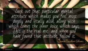 James Truslow Adams quote : Seek out that particular ...