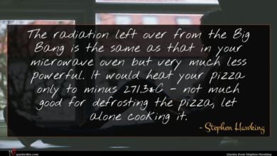 Photo of Stephen Hawking quote : The radiation left over …